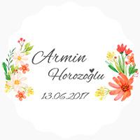 Armin Horozoğlu
