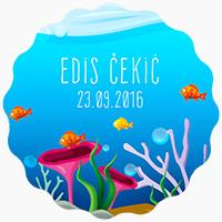 Edis Cekic