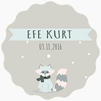 Efe Kurt