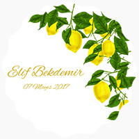 Elif Bekdemir