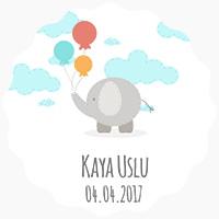 Kaya Uslu